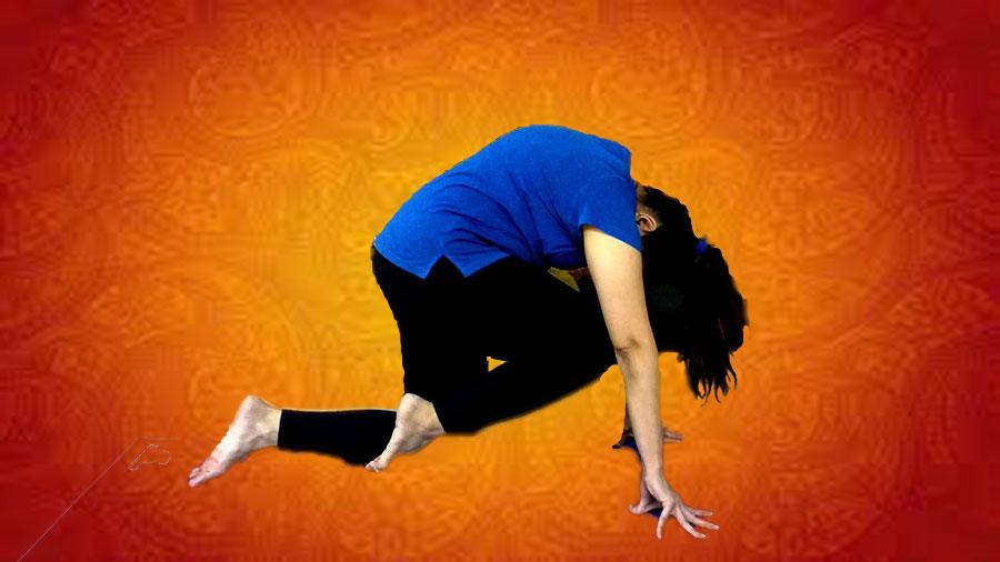 Vyaghrasana-tiger-pose-yoga-stretch