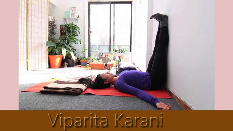 viparita-karani-imgae