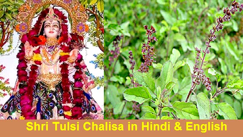 Tulsi-Chalisa